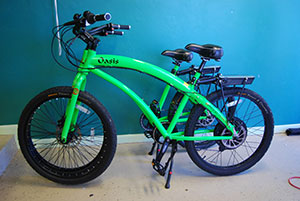 electric bike rentals